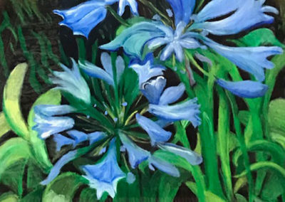 FLORIDA FLOWERS SERIES - Agapanthus (Nile Lily)