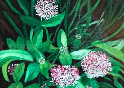 FLORIDA FLOWERS SERIES - Penta