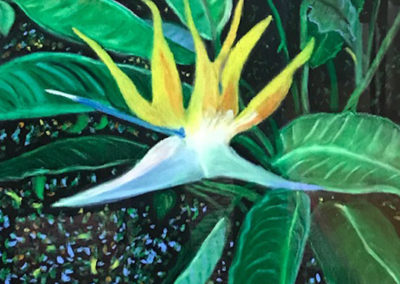 FLORIDA FLOWERS SERIES - Bird of Paradise