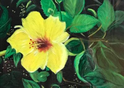FLORIDA FLOWERS SERIES - Hibiscus
